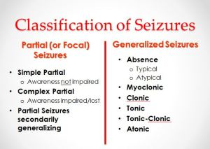 chart-of-common-seizure-types